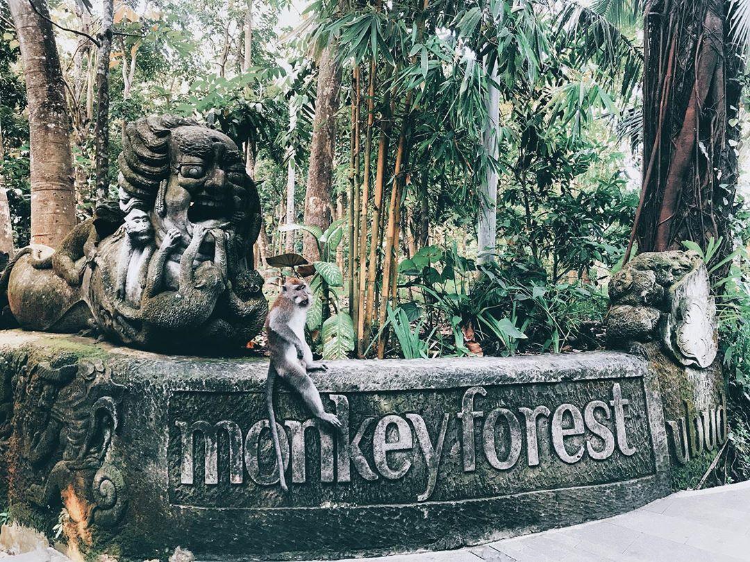 Spot di Monkey Forest Ubud