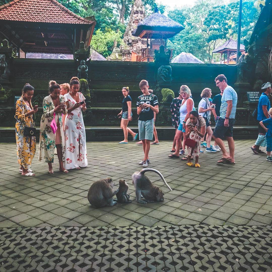 Turis di Monkey Forest Ubud