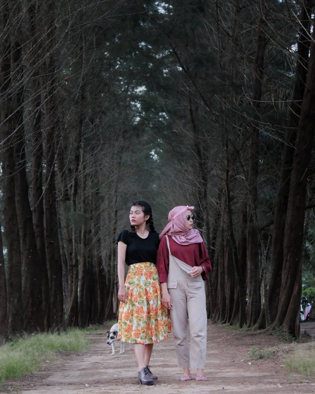 Sejuk Bangka Botanical Garden
