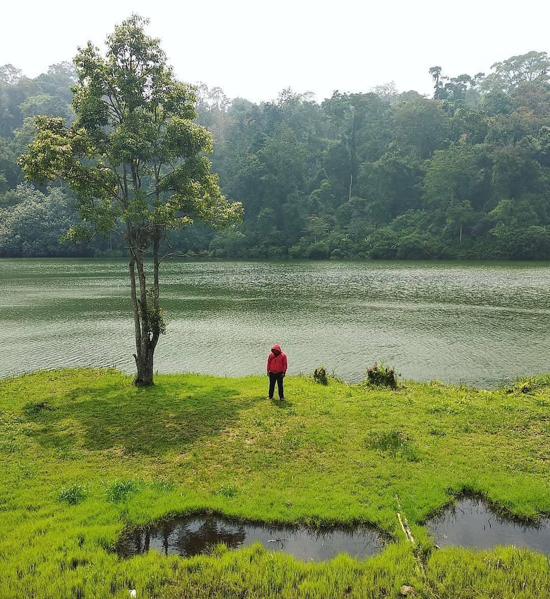 Hijau Danau Lingkat