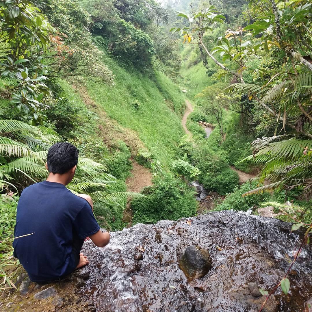 Pemandangan Desa Wisata Wonomulyo