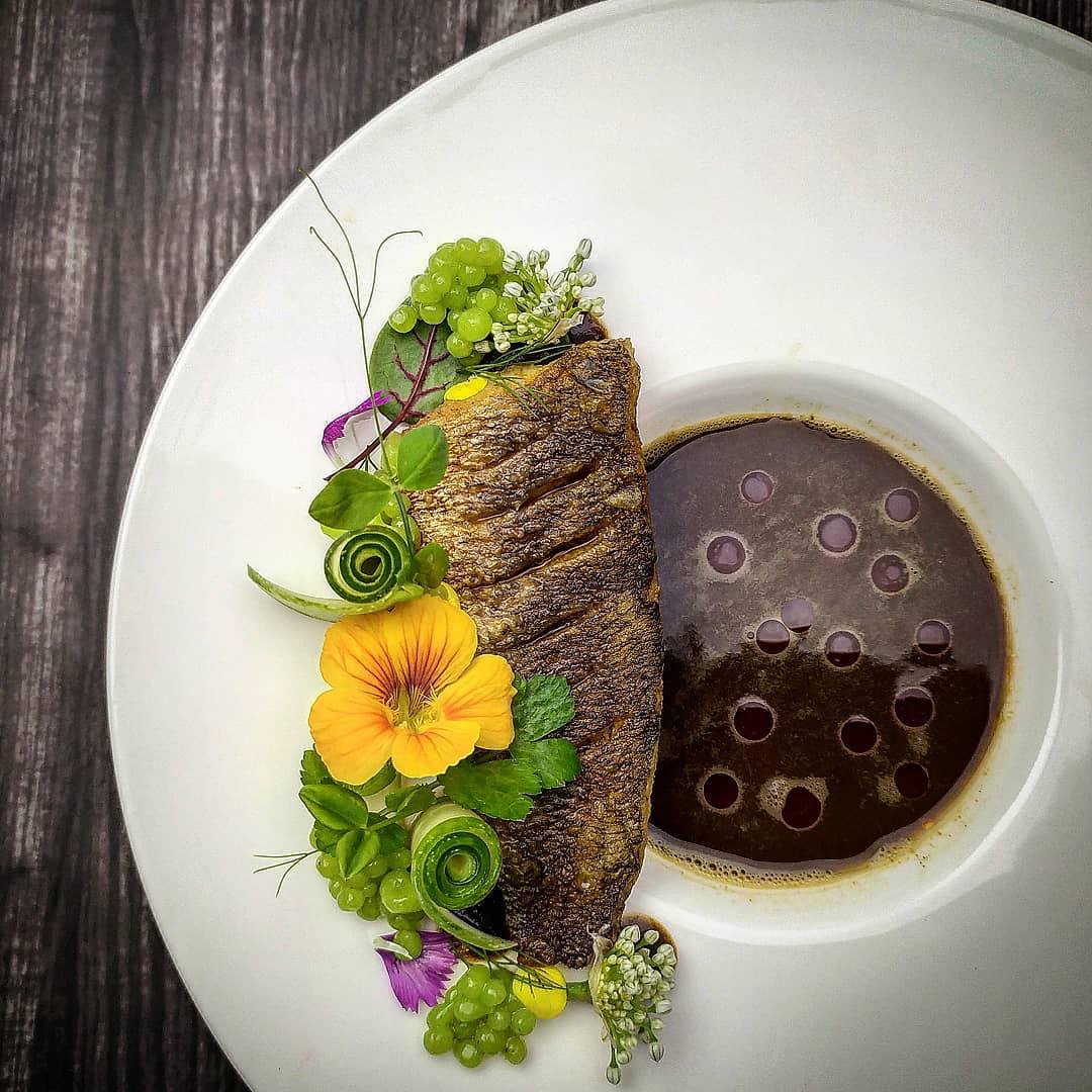 Ikan gabus pucung