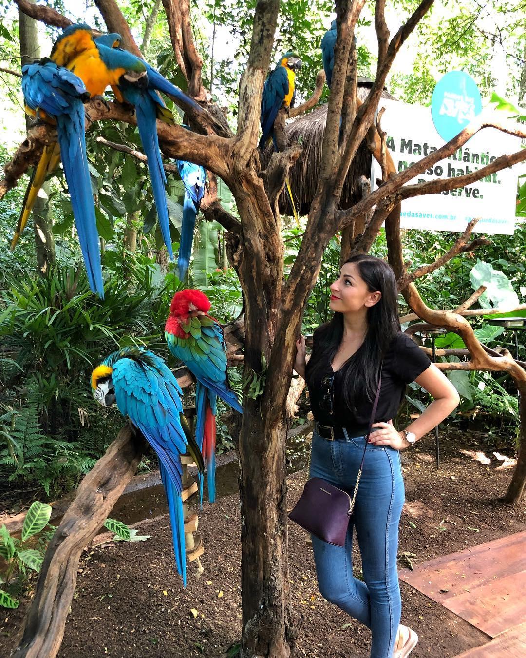 burung parque das aves