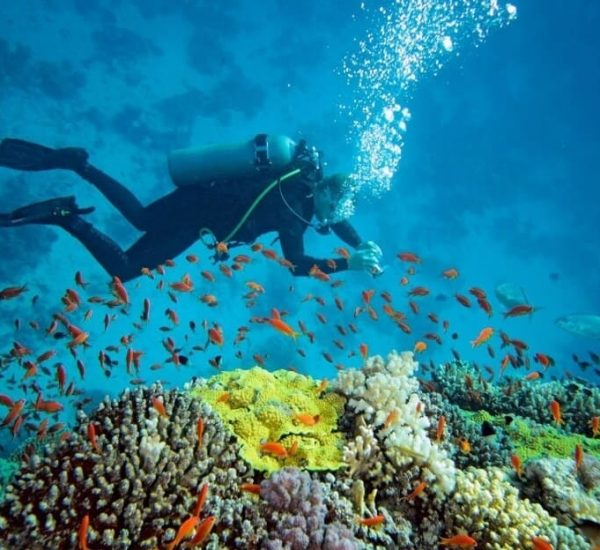 Bali-Seawalker-Bl