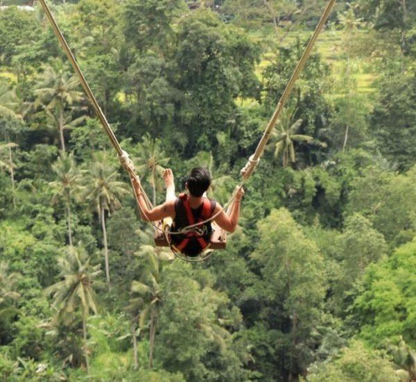 Bali-Swing-Bl