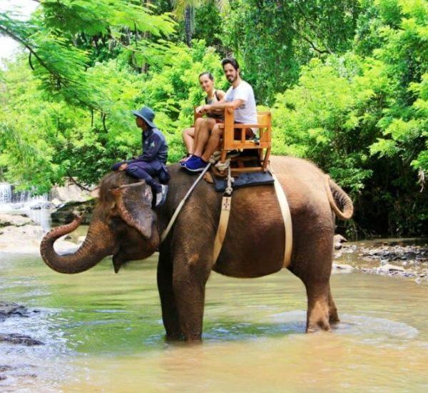 Bali-zoo-Bl