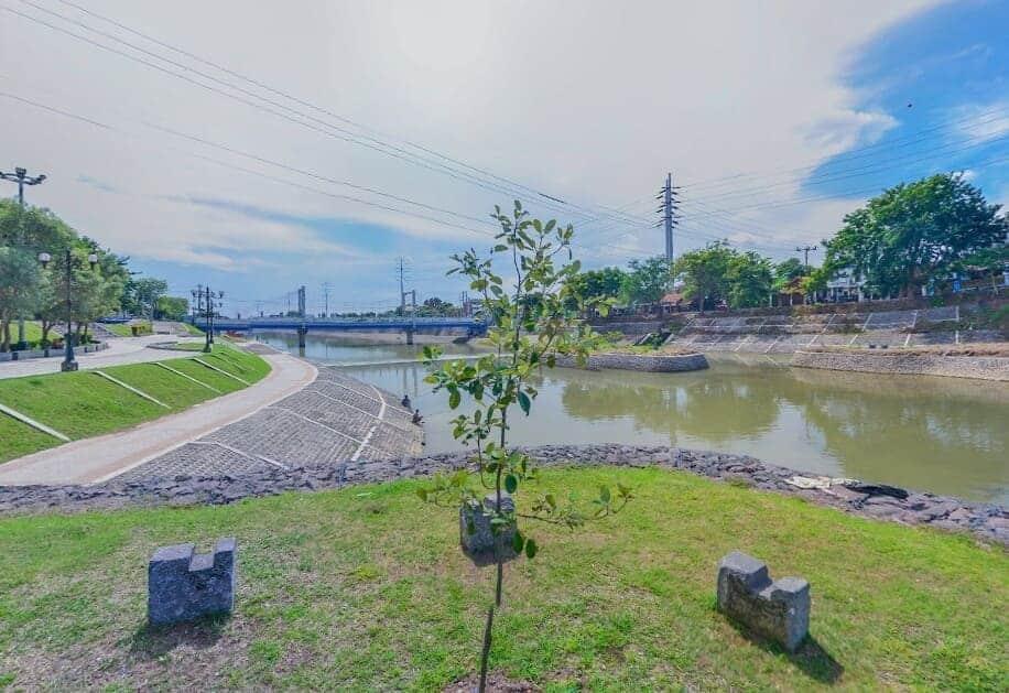 Banjir-Kanal-Barat-Semarang-Pohon