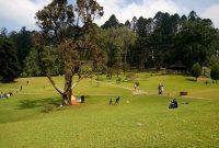 Harga Tiket Masuk dan Peta Lokasi Kebun Raya Cibodas Cianjur Jawa Barat 4
