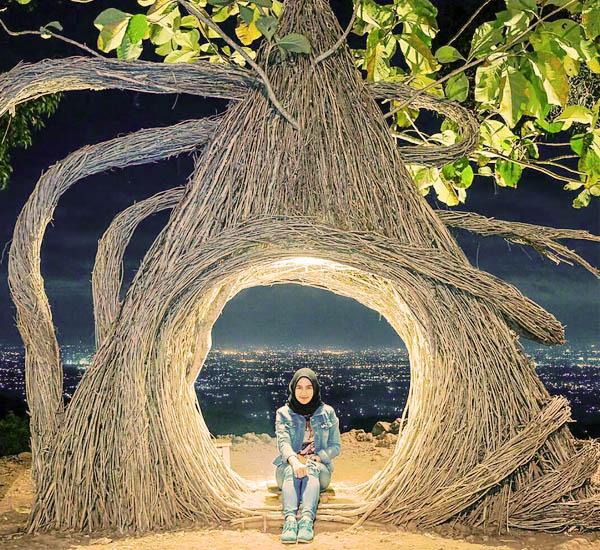 Hutan Pinus Sendangsari