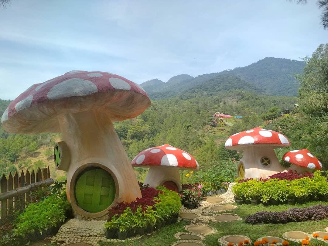 Batu Flower Garden Malang 2