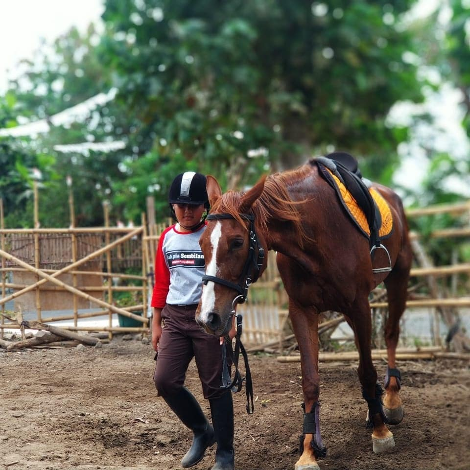 Jogja Horse and Resto (Johnsto) 3