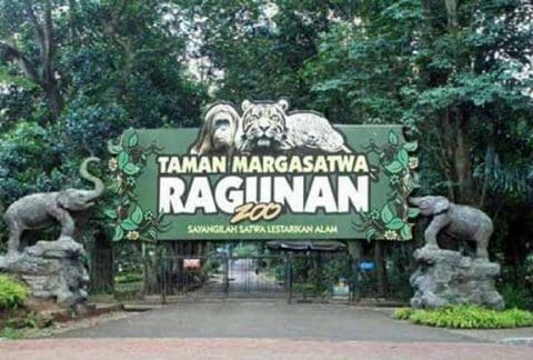Kebun Binatang Ragunan dEPAN