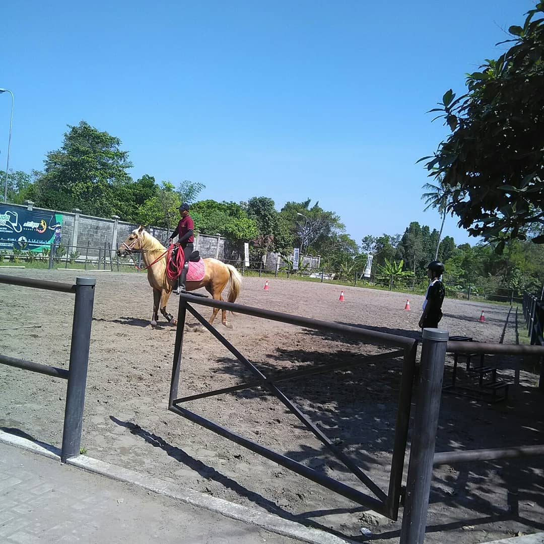 Jogja Horse and Resto (Johnsto) 7