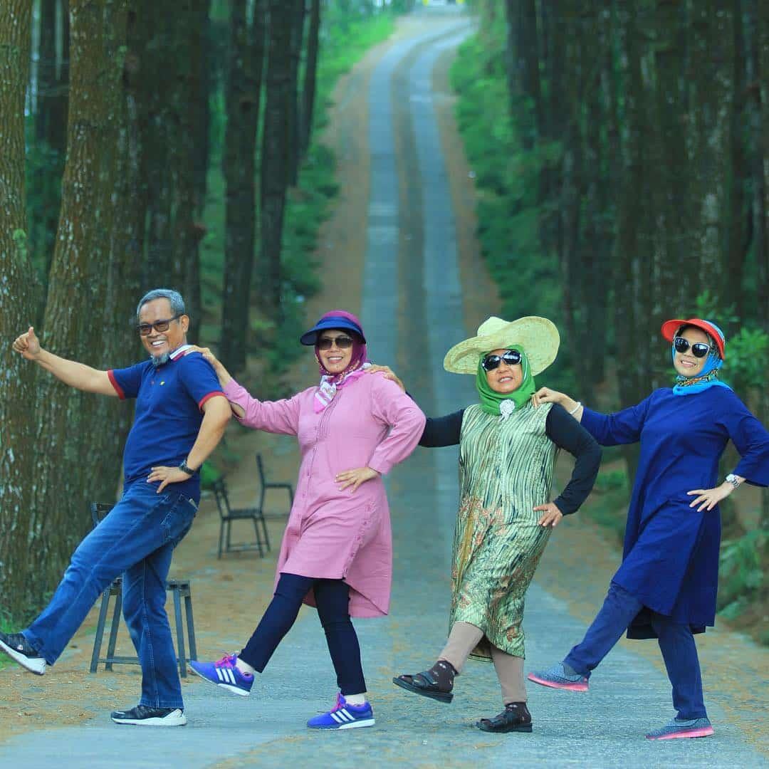 Top Selfie Hutan Pinus Kragilan Magelang: HTM dan Lokasi