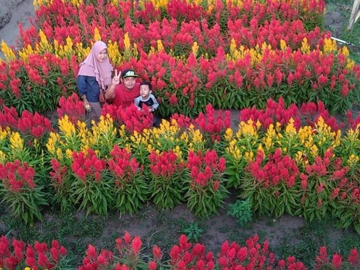 Perengan Park Bunga