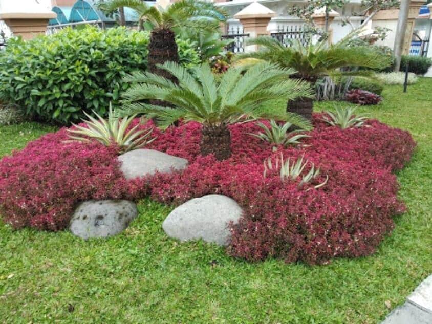 Simpang Lima Bunga