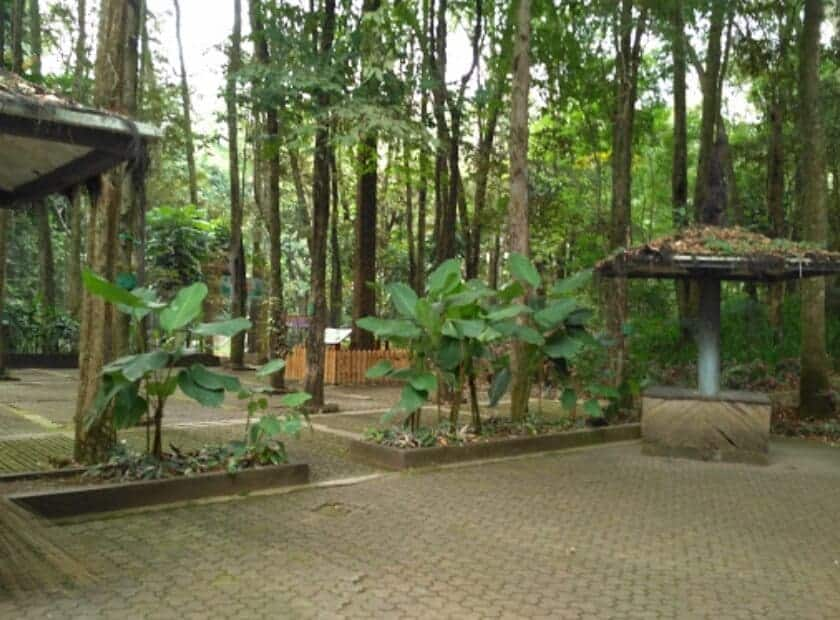 Taman-Hutan-Raya-Juanda-Rumah