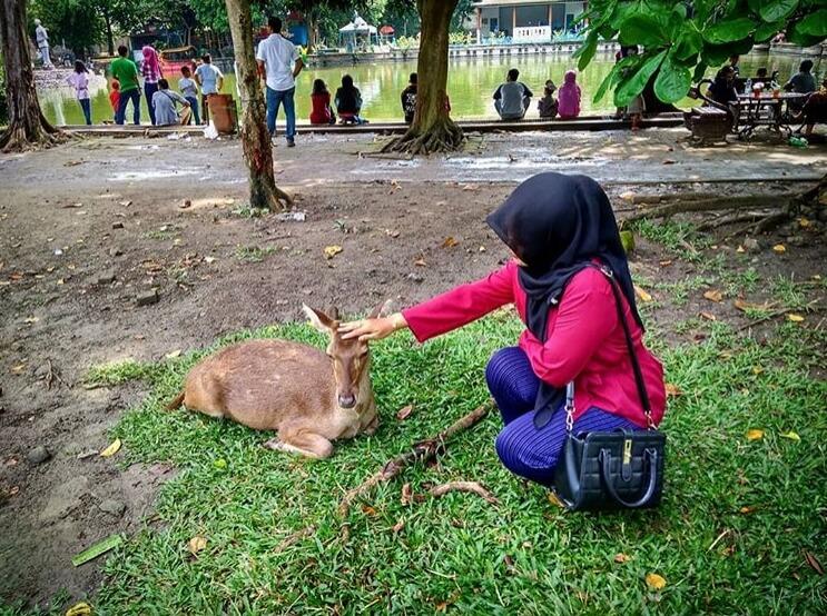 Taman balekambang solo @susanti_priyosupadmo