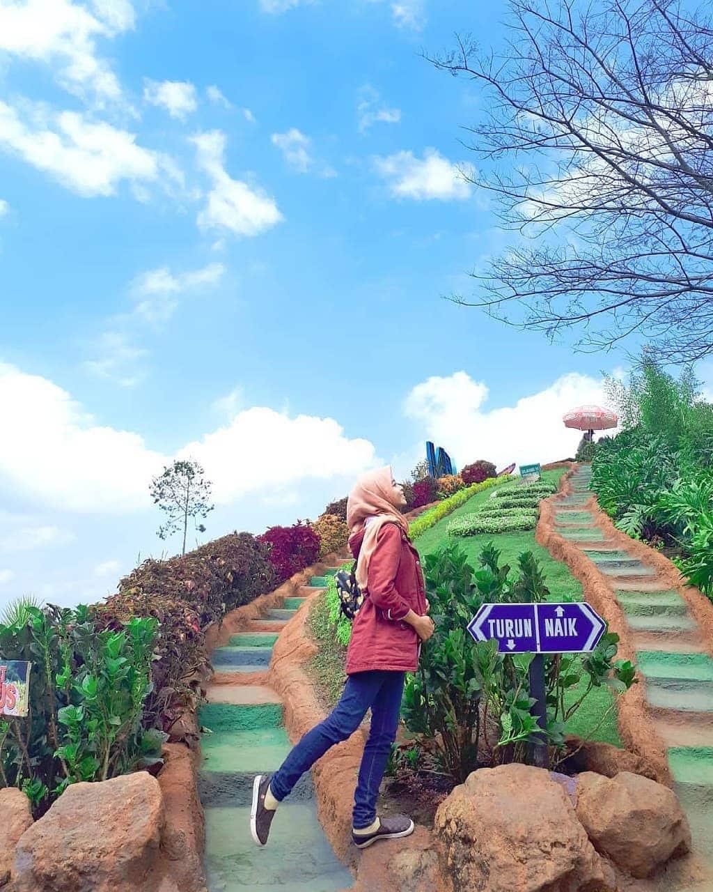 Batu Flower Garden Malang 3