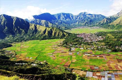 desa sembalun lombok